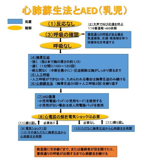 北海道深川市  心肺蘇生法とAED